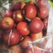 Apple Picking, Fall 2015